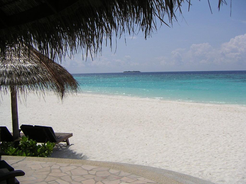 2005 Malediven Coco Palm